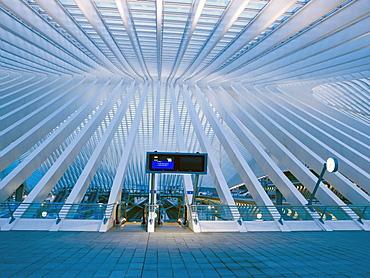 Concourse, Gare de Liege-Guillemins, architect Santiago Calatrava, Liege, Belgium, Europe