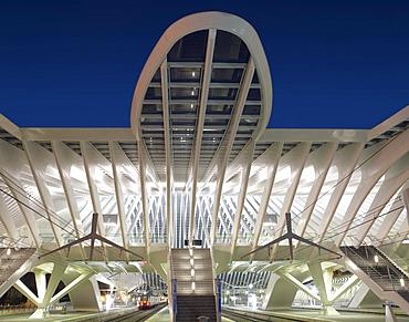 Exterior view, Gare de Liege-Guillemins, architect Santiago Calatrava, Liege, Belgium, Europe