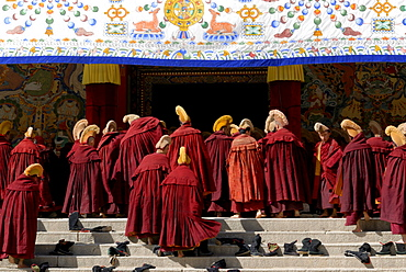 Tibetan monks wearing robes and yellow hats of the Gelug Order or Yellow Hat Sect on the stairs in front of the Assembly Hall, Tibetan Dukhang, the Labrang Monastery, Xiahe, Gansu, China, Asia