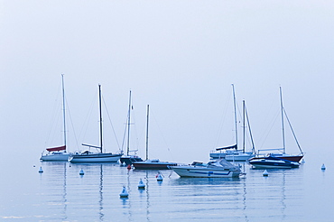 Sailing boats at Bardolino, Lake Garda, Lago di Garda, Veneto, Italy, Europe