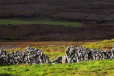 Stone wall fence, Ireland, Irish Republic, Europe