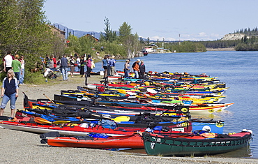 Canoes and kayaks on the shore, start of the 2009 Yukon River Quest, long distance canoe race, Whitehorse, Yukon River, Yukon Territory, Canada