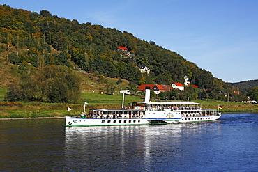 "Paddle steamer ""Leipzig"" of the Saxon steam navigation, on Elbe River near Koenigstein, Elbe Sandstone Mountains, Saxon Switzerland National Park, Saxony, Germany, Europe"