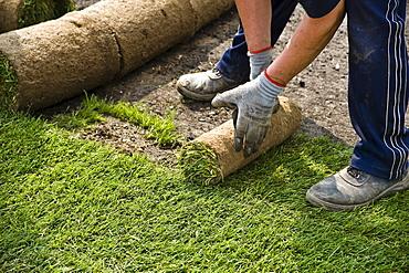 Lawn turf in rolls at the Landesgartenschau Brandenburg Horticultural Show in Oranienburg, Brandenburg, Germany, Europe