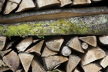 Split wood in a wood stack