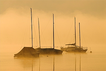 Morning fog above Lake Starnberg and silhouettes of boats at Seeshaupt, Bavaria, Germany, Europe