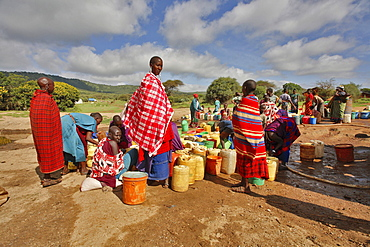 Masai at artificial waterplace, well, Masai steppe, North Tanzania, East Africa