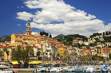 Old town of Menton and St. Michel's Church, Menton, Cote d'Azur, France