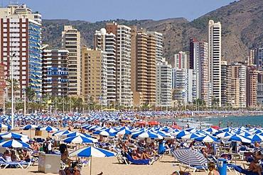 Beach, Playa Levante, tourist hotspot Benidorm, Costa Blanca, Spain