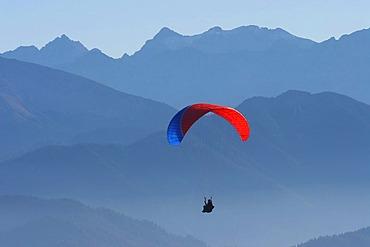 Paraglider in the Bavarian pre-Alps region Brauneck, Lenggries, Bavaria, Germany