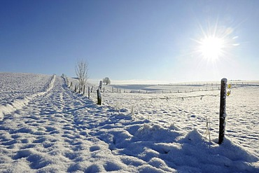 Snow covered field road near Muensing, Upper Bavaria, Bavaria, Germany