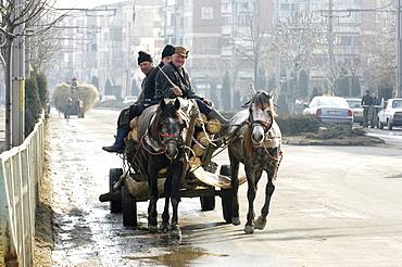 Horse-drawn vehicle, Romania, Eastern Europe