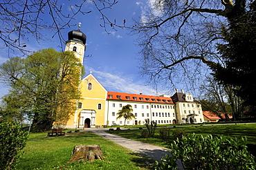 St Martin Church, former abbey church of the Augustinians Canons Regular of Bernried, on Starnberg Lake, Upper Bavaria, Bavaria, Germany, Europe