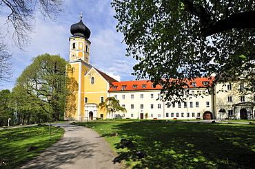 St. Martin's church, the former abbey church of the Augutinerchorherren Bernried on Lake Starnberg, Upper Bavaria, Bavaria, Germany, Europe