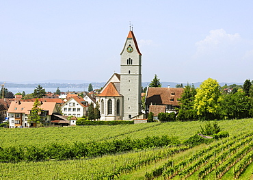 Church of Hagnau on Lake Constance, Baden-Wuerttemberg, Germany, Europe