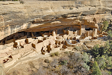 Historic buildings in the Ancestral Puebloans, entire Cliff Palace complex, Mesa Verde National Park, Colorado, USA