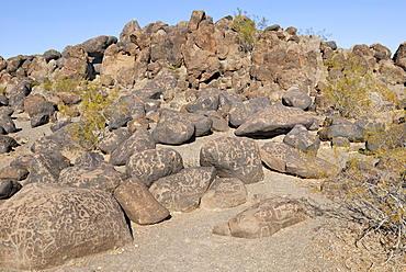 Native American rock engravings, petroglyphs, about 1000 years old, Painted Rock Petroglyph Site, Painted Rocks State Park, Gila Bend, Maricopa County, Arizona, USA