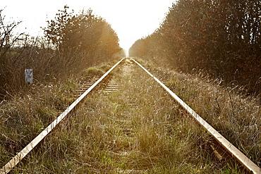 Disused railway track