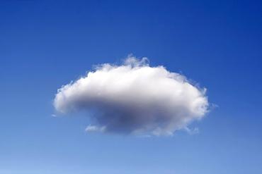 Cloud, cumulus cloud