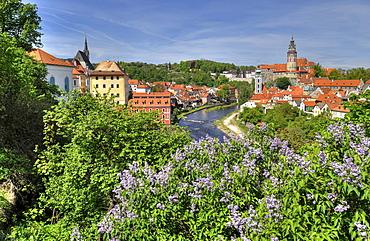 View of the historic town and Vltava river, with tower of Cesky Krumlov castle, Cesky Krumau, UNESCO World Heritage Site, Bohemia, Czech Republic, Europe