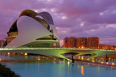 Palace of Arts Reina Sofia, City of Arts and Sciences, Comunidad Valenciana, Valencia, Spain, Europe
