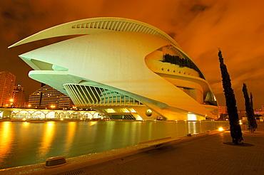 Palace of Arts Reina Sofia, by S. Calatrava, City of Arts and Sciences, Comunidad Valenciana, Valencia, Spain, Europe