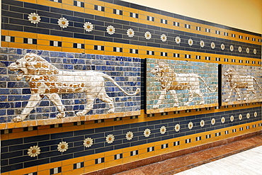Three lions, brick relief from the Babylonian Ishtar Gate, Archeological Museum, Topkapi Palace, Istanbul, Turkey