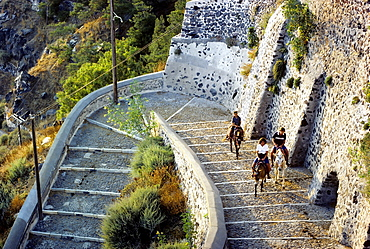 Steep stairs from the port to Fira, tourists riding on mules, Santorini, Thira, Cyclades, Greece, Europe