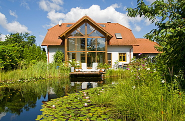 Garden pond with water lilies, in front of house with winter garden, in summer