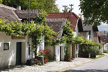 Presshaeuser former wine press houses, Grosse Kellertrift, Kellergasse lane, Haugsdorf, Weinviertel region, Lower Austria, Austria, Europe