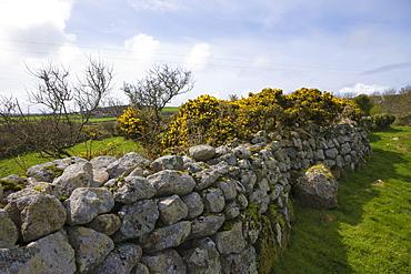 Carn Euny iron age courtyard, house, settlement, Brane, Sancreed, West Penwith, Cornwall, England, United Kingdom, Europe