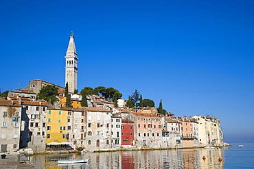 Rovinj historic centre with Saint Euphemia's basilica, seen from Valdibora, Rovinj, Istria, Croatia, Europe