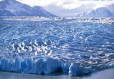 Scarp of the Grey Glacier in the Torres del Paine National Park, Patagonia, Puerto Natales, Region de Magallanes y de la Antartica Chilena, Chile, South America