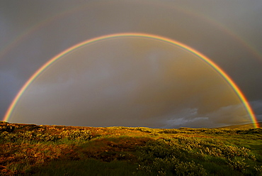Rainbow over mountainous landscape, near Trondsbur, Hardangervidda, Europe's biggest high plain, Norway, Europe
