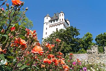 Electoral castle of the archbishops of Mainz, Eltville, Hesse, Germany, Europe