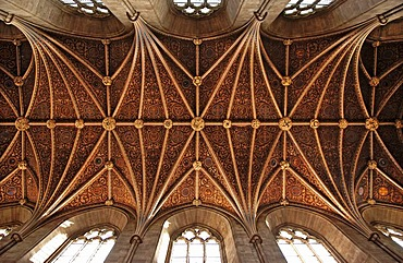 Gothic cross vault in a cathedral, Hereford, England, Europe