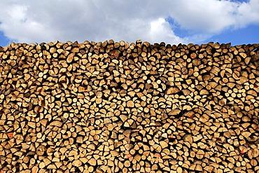 Piled up fire wood, Buch, Nuremberg, Franconia, Bavaria, Germany,