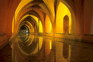 Royal residence, Real Alcazar palace, Reales Alcazares, Banos de Dona Maria de Padilla, a pond in the vaulted cellars, Seville, Andalusia, Spain, Europe