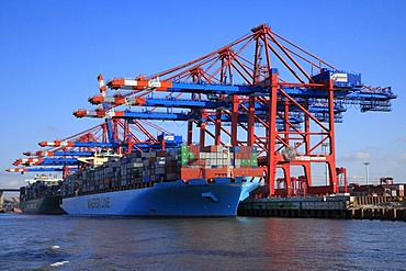 Large container ship, Maersk Line, Maersk Salina being loaded, Eurogate Container Terminal, container bridges, container cranes, port, Hanseatic City of Hamburg, Germany