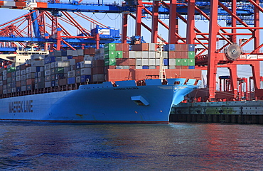 Large container ship, Maersk Line, Maersk Salina, being loaded, Eurogate Container Terminal, container bridges, container, port, Hanseatic City of Hanseatic City of Hamburg, Germany, Europe