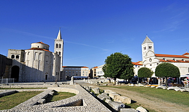 Roman Forum with St. Donat's Church, Campanile of St Anastasia's Cathedral, and St Mary's Church in Zadar, Dalmatia, Croatia, Europe