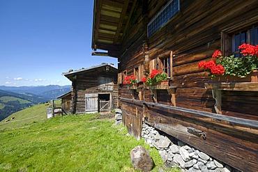 Breitegg Alm, alpine farm, Wildschoenau, Tyrol, Austria, Europe