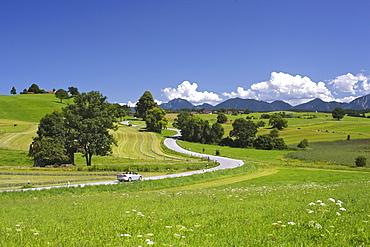 Road, cabriolet, landscape, summer, Riegsee lake, Murnau, Upper Bavaria, Bavaria, Germany, Europe