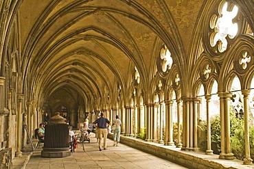 Cloister, Salisbury Cathedral, Salisbury, Dorset, South England, England