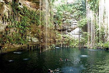Cenote Sagrado Azul in the Ikkil park at Chichen Itza, Yucatan, Mexico, Central America
