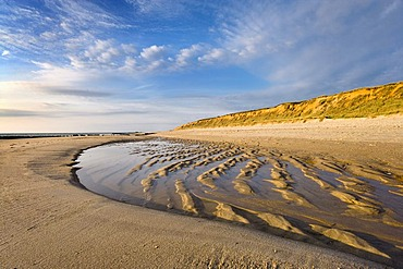 Evening mood at the beach in front of Rotes Kliff, red cliff, Kampen, Sylt Island, North Frisia, Schleswig-Holstein, Germany, Europe