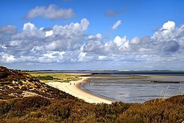 Beach at Braderup heath, Braderup, Sylt, North Frisia, Schleswig-Holstein, Germany, Europe