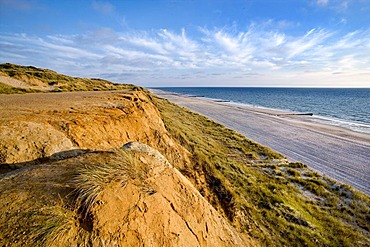 View from Rotes Kliff, red cliff, Kampen, Sylt Island, North Frisia, Schleswig-Holstein, Germany, Europe