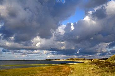 Landscape at the Ellenbogen, List, Sylt, North Frisia, Schleswig-Holstein, Germany, Europe