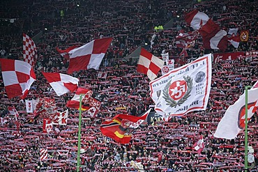 Fans of the 1.FC Kaiserslautern football club, Second German Soccer League, match 1. FC Kaiserslautern vs. TuS Koblenz in the Betzenberg or Fritz-Walter-Stadion, Kaiserslautern, Rhineland-Palatine, Germany, Europe